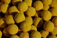 Soluble Boilies - Fish Activ